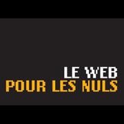 rv-tic-le-web-pour-les-nuls