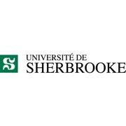 rdv-tic-logo-usherbrooke-logo